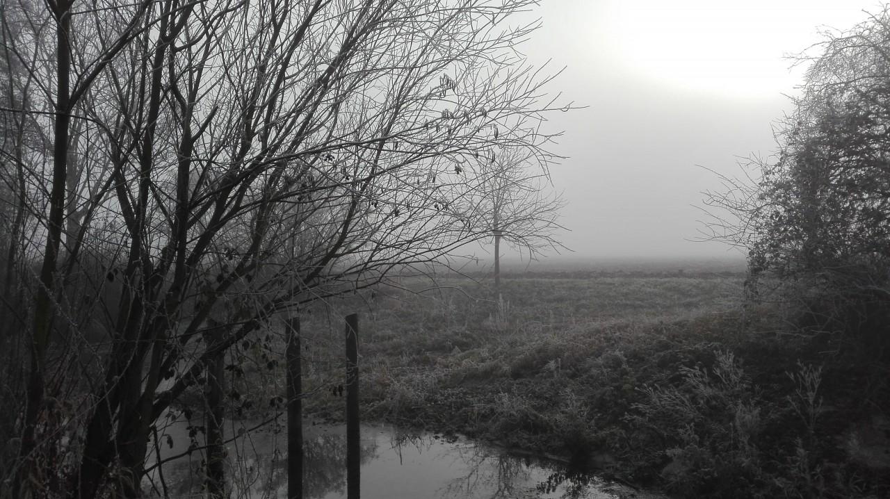 Walkin' through a winter wonderland